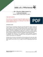 Whirlwinds PP&PSU