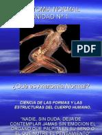 Inst. Quirúrgica - 1º Año - Anatomía - Unidad Nº1 - Anatomía Normal(2)