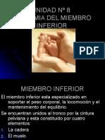 Inst. Quirúrgica - 1º Año - Anatomía - Unidad Nº8 - Miembro Inferior