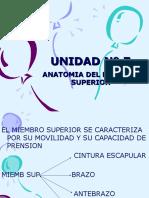 Inst. Quirúrgica - 1º Año - Anatomía - Unidad Nº7 - Miembro Superior