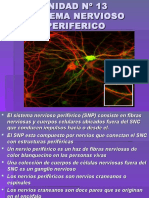 Inst. Quirúrgica - 1º Año - Anatomía - Unidad Nº13 - Sistema Nervioso Periférico