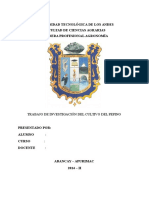 251972616-El-Pepino1dic14