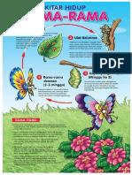 kitar rama- rama.pdf