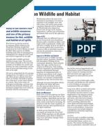 OIL IMPACT on Wildlife -- Fact Sheet, MAY-2010