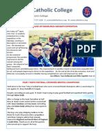 Newsletter 215