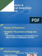 natural selection review