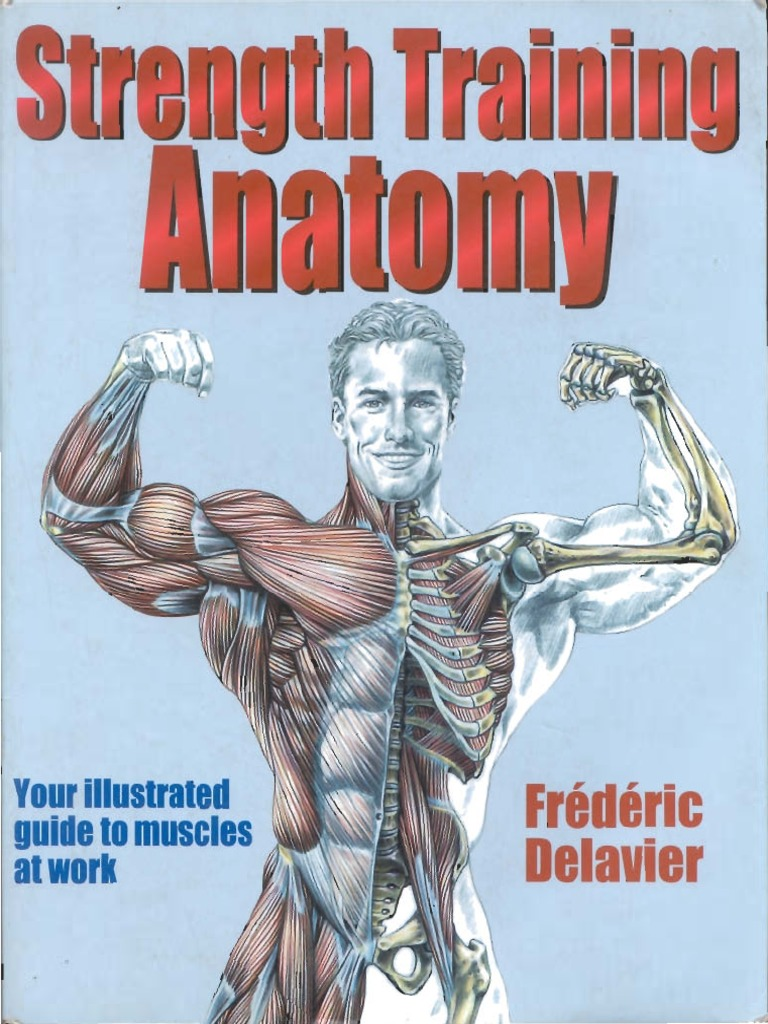 Strength Training Anatomy.pdf
