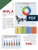 Infografia Pecuaria 2008-2013