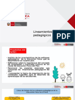 02_ENFOQUE_PPT Lineamientos pedagógicos 2016.ppt