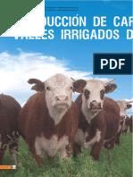 Producción de Carne Vacuna en Los Valles Irrigados