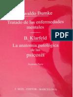 Tratado de Las Enfermedades Mentales -  Oswald Bumke Tomo 2