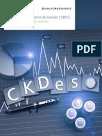 CErPIS - Deloitte Basila