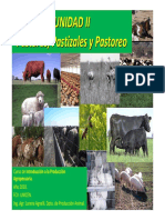 IPA - Clase Pasturas