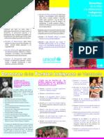 Derechos Ninez y Adolescencia Indigenas (1) Tripticos