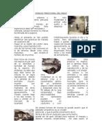CRIANZA TRADICIONAL DEL MAJAZ perez 2.docx