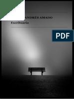 Escrituaria (Libro) Julián Amado