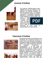 Clases de Vacuno 3 Parte.