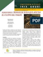 NEMATODO EN TOMATE.pdf