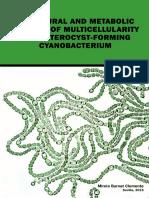 cianobacteria.pdf