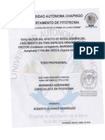Evaluación Del Efecto de Reguladores Del Crecimiento en Tres Especies Ornamentales Crotos (Codiaeum Variegatum), Marginata (Dracaena Marginata) y Palma Areca (Dypsis Lutescens)