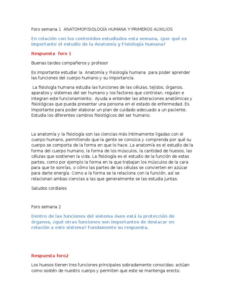 Famoso Importante En La Anatomía Y La Fisiología Fotos - Anatomía de ...