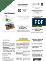 triptico final productividad (1).pdf