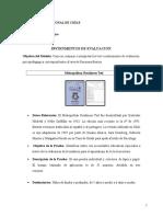 Instrumentos de Evaluación 4