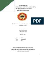 45623828 RPP IPA Ciri Ciri Khusus Beberapa Tumbuhan Kelas VI Semester I