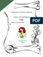 PAE 1