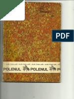 POLENUL - Alin Caillas.pdf