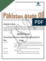 24581097-PSO-Financial-Statment-Analysis.pdf