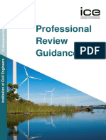Professional Review Guidance Document