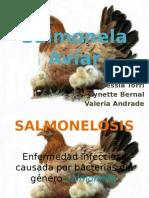 Salmonelaaviar