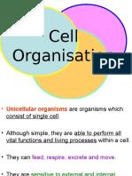 1 Cell Organization