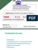 TEMA 1.1.1-Estudo de Nutrientes  energeticos (Carboh).pptx
