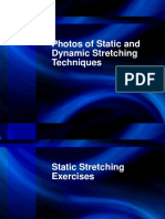 Sample Static and Dynamic Stretches