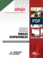 Guia Organizacion Ejecucion Paneles Ocupacionales
