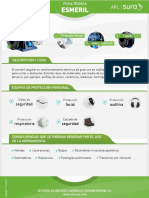 PDF Esme RGil