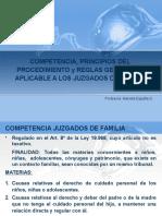 2-2016 COMPETENCIA Y PPIOS PROCEDIMIENTO.ppt