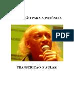 Educação Para Potência (8 Aulas) - Luiz Fuganti