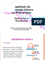 8__RAISSA.pptx
