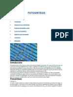 Fotosíntesis Rv