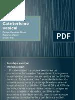 51 Cateterismo Vesical 4001