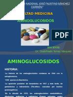 9.- AMINOGLUCOSIDOS (1)
