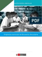 Programa Nivel Secundaria Ebr