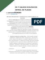 Preparados y Caldos Ecológicos Para El Control de Plagas y