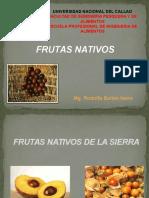 FRUTAS-NATIVAS