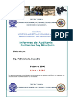 INFORME AUDITORIA AMBIENTAL CURTIEMBRE.doc