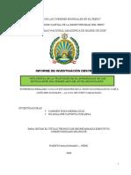 Informe Final Tesis de La Unamad
