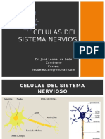 CELULAS DEL SISTEMA NERVIOS.pptx